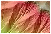 Recent Gullies in a Crater in Noachis Terra