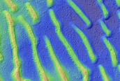 Proctor Crater Dune Field