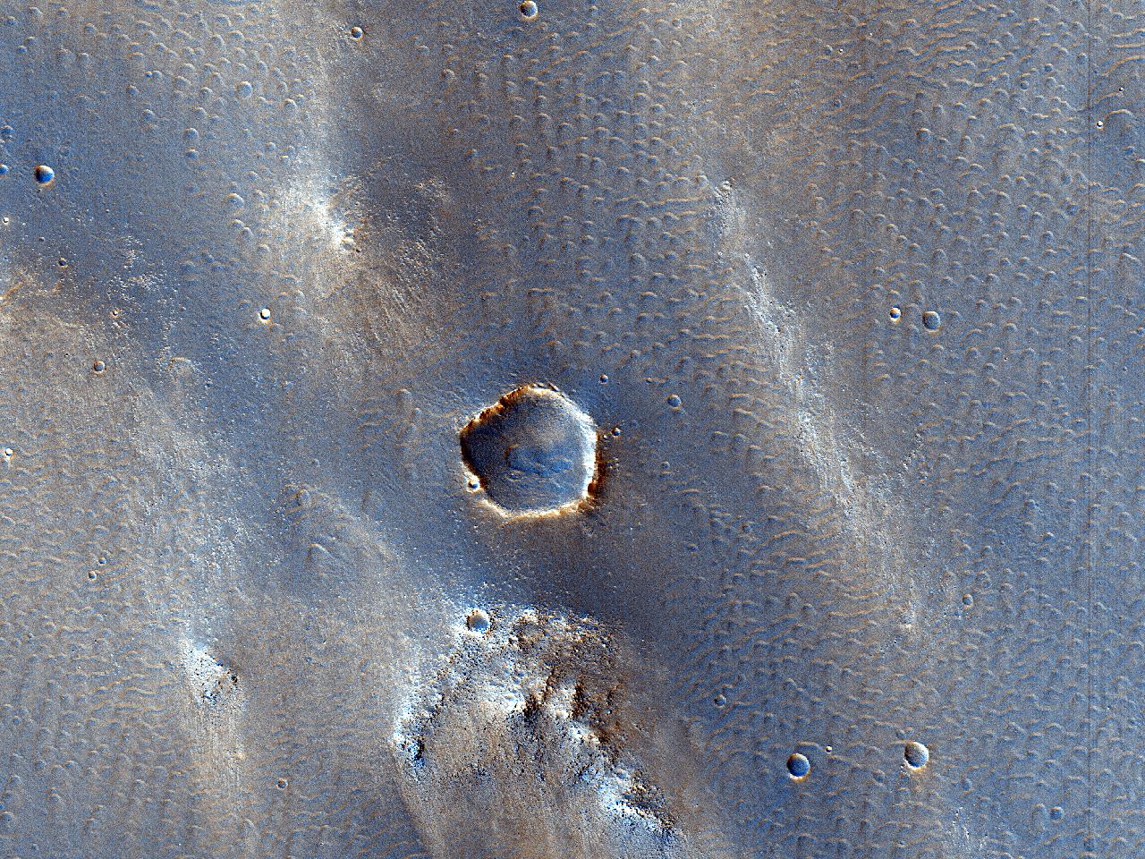 Cana possibilia flabella in imo latere crateris sita