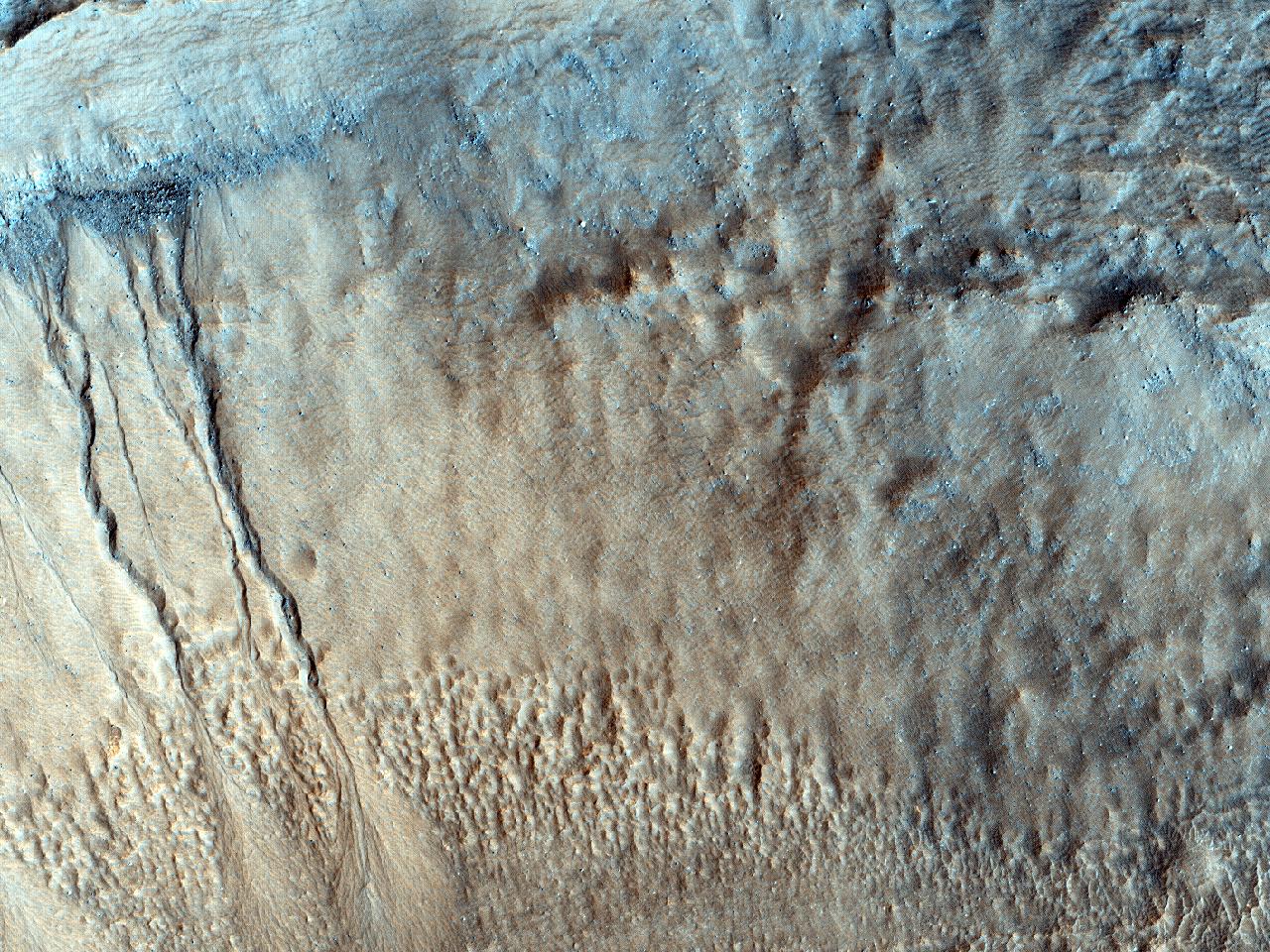 Latus crateris attritum aqua