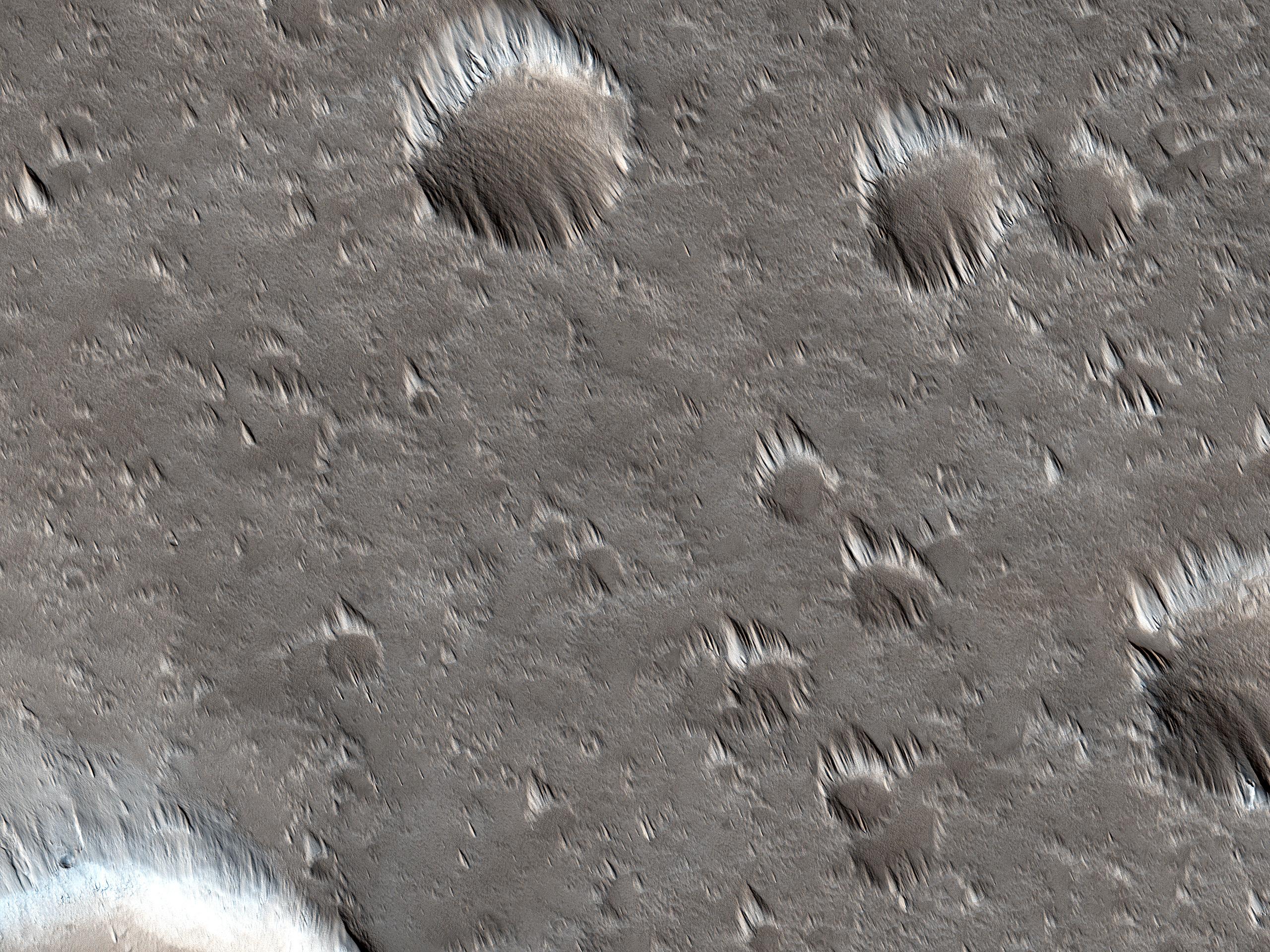 Cambiamenti negli accumuli di polvere ad ovest dell'Alba Mons