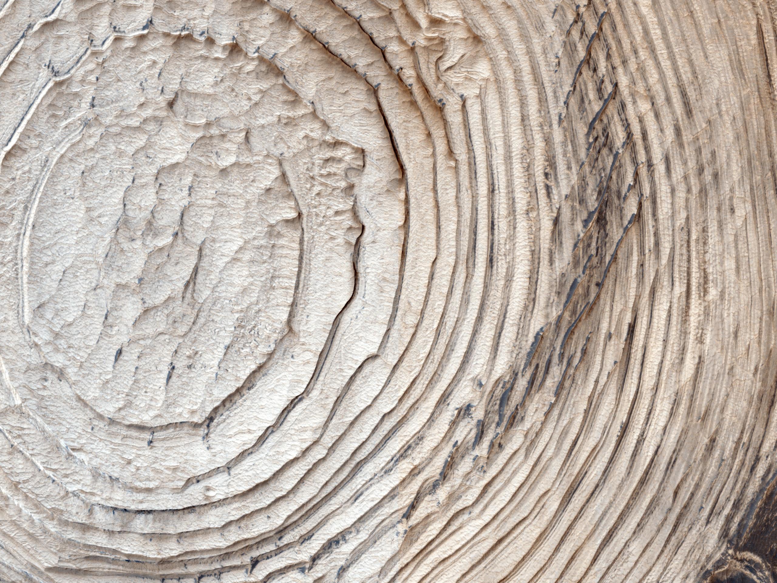 Strati, creste rocciose e sabbia scura nel Cratere Schiaparelli