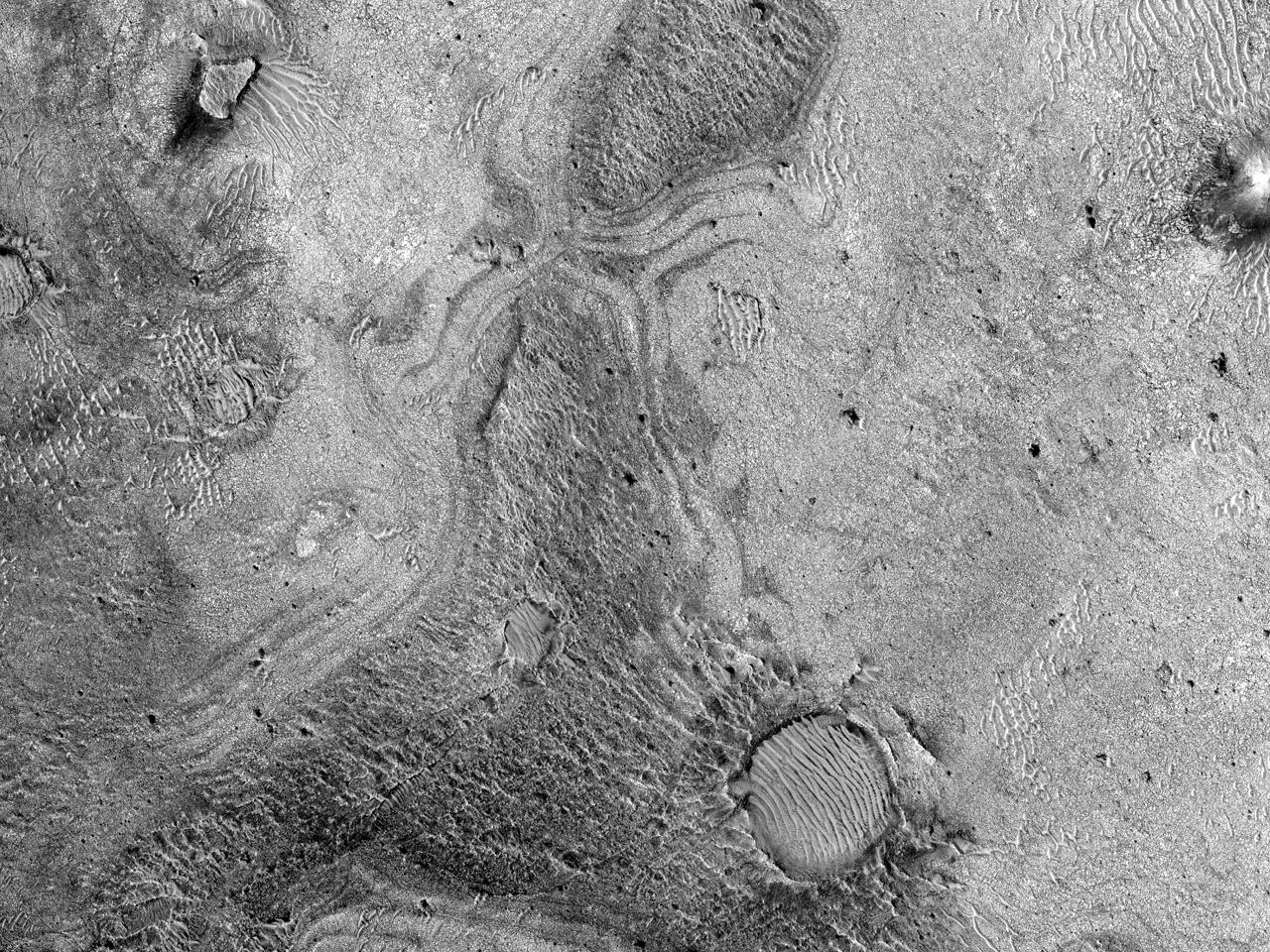 الموقع المُقترح للاستكشافات المُستقبلية فى السهول الكربوناتية لتشققات نيلي (Nili Fossae)