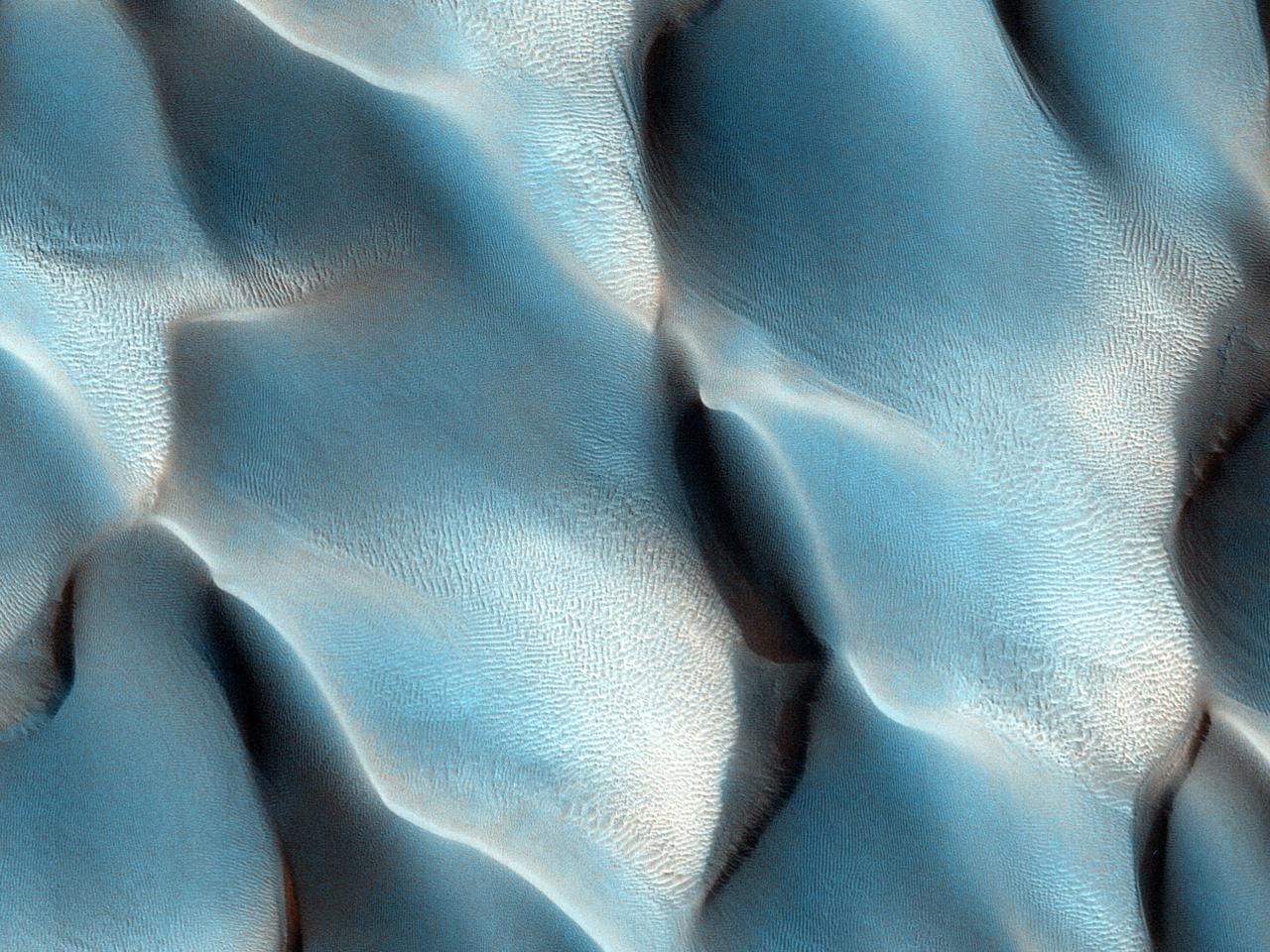 Et hav av polardyner