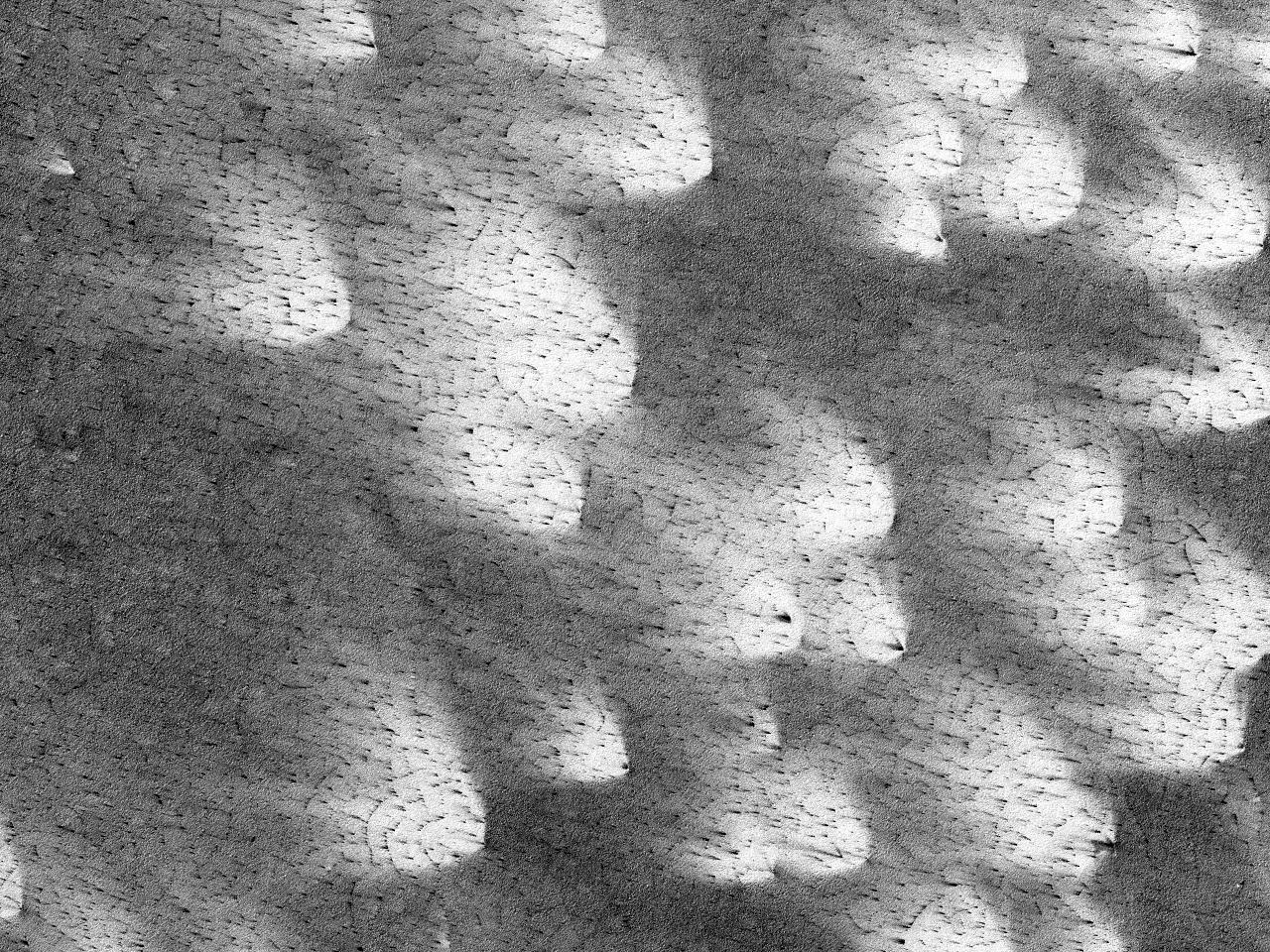 Edderkopplignende mønstre, vifter, og polygoner