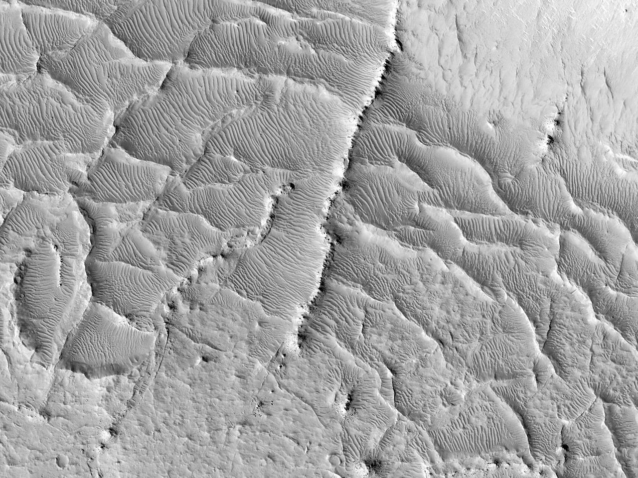 Creste în partea estică a Elysium Planitia