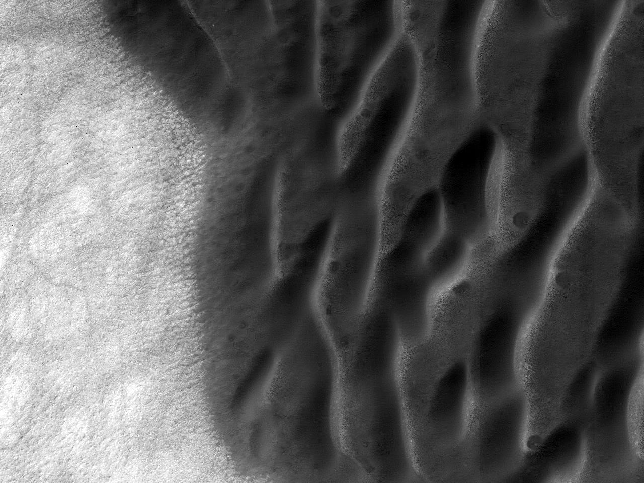 Dune și teren deschis la culoare