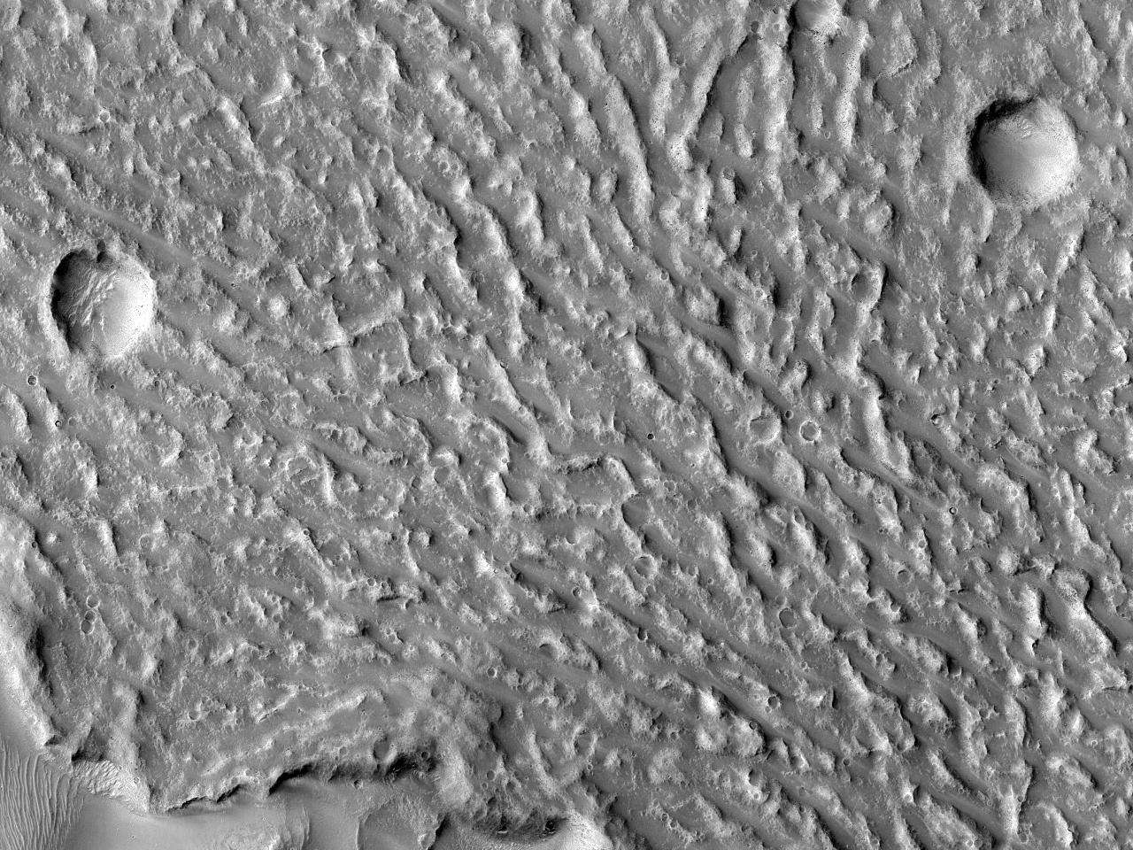 Поток лавы на плато Daedalia Planum