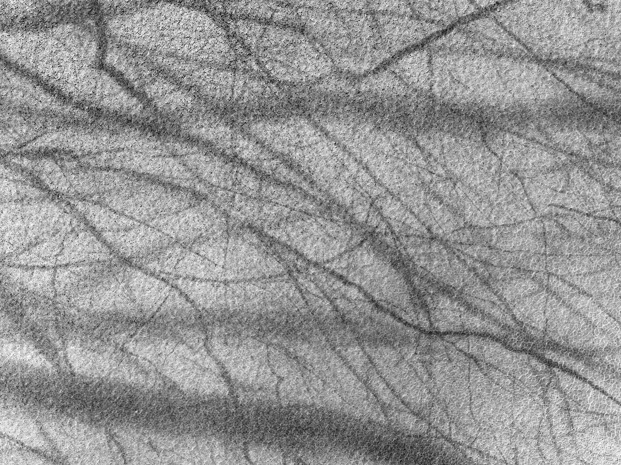 Huellas de torbellinos de polvo en un cráter helado