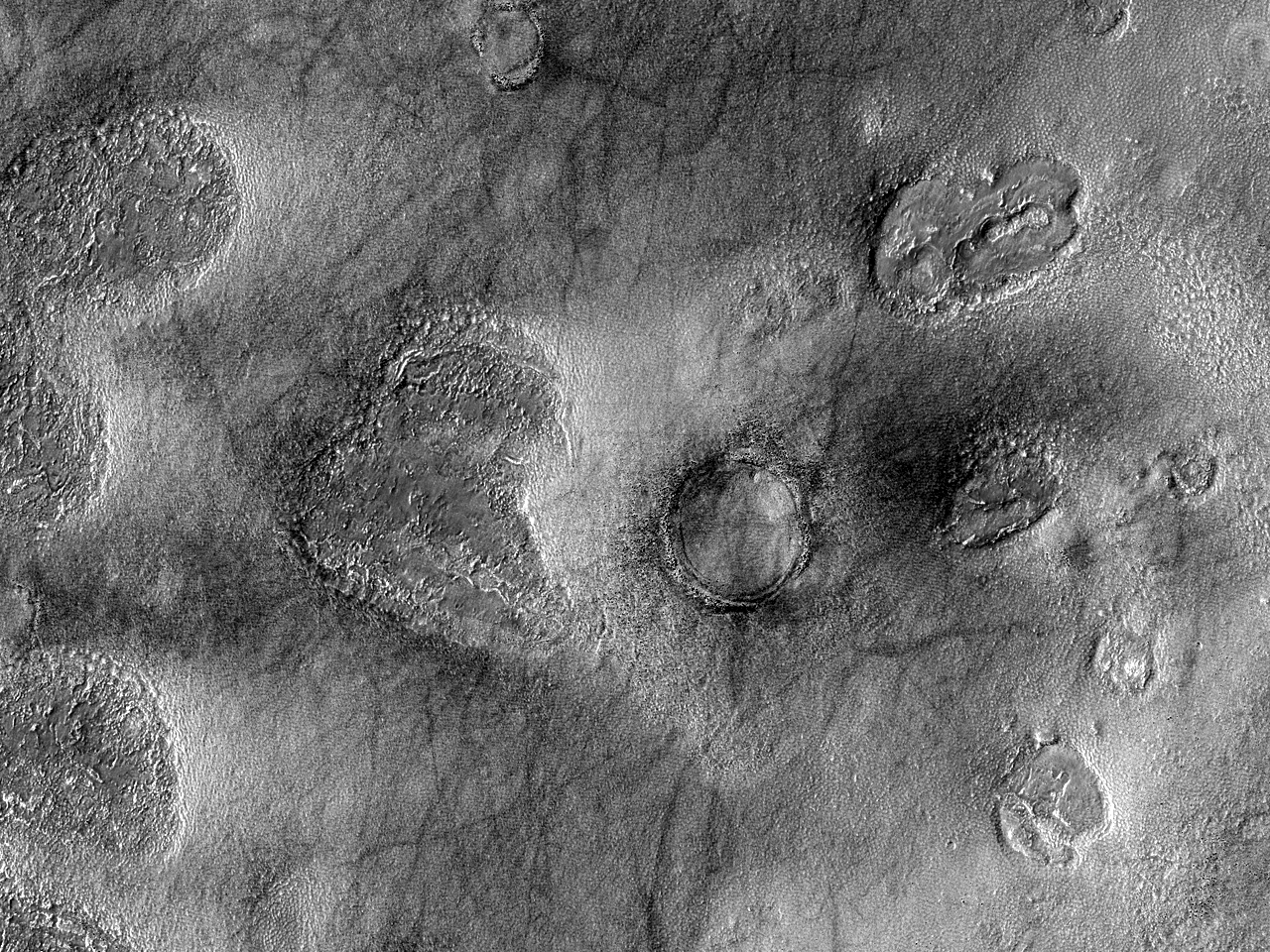 A Variety of Surfaces and Terrains
