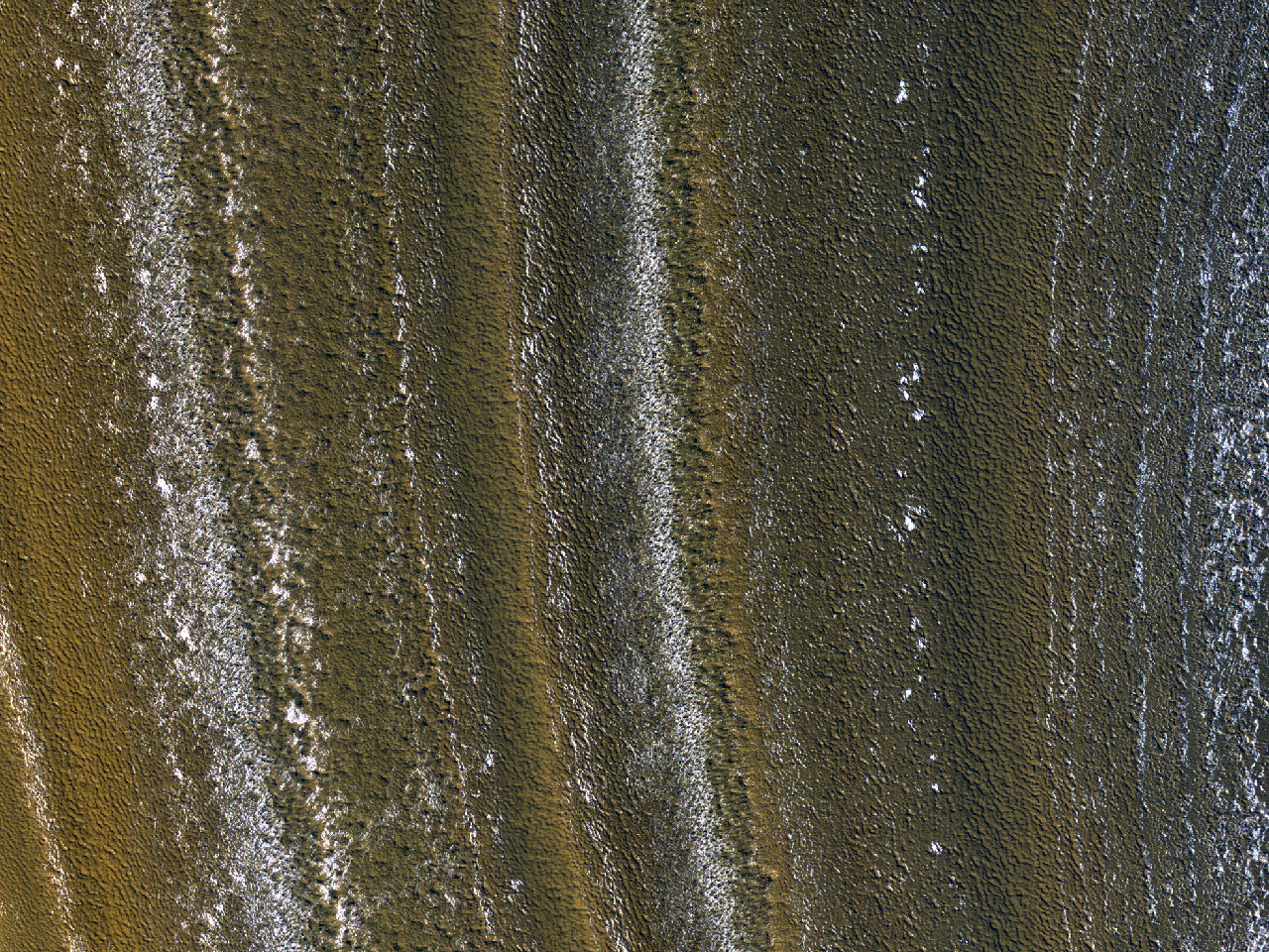 Avdekkede forekomster i lag ved den nordlige pol