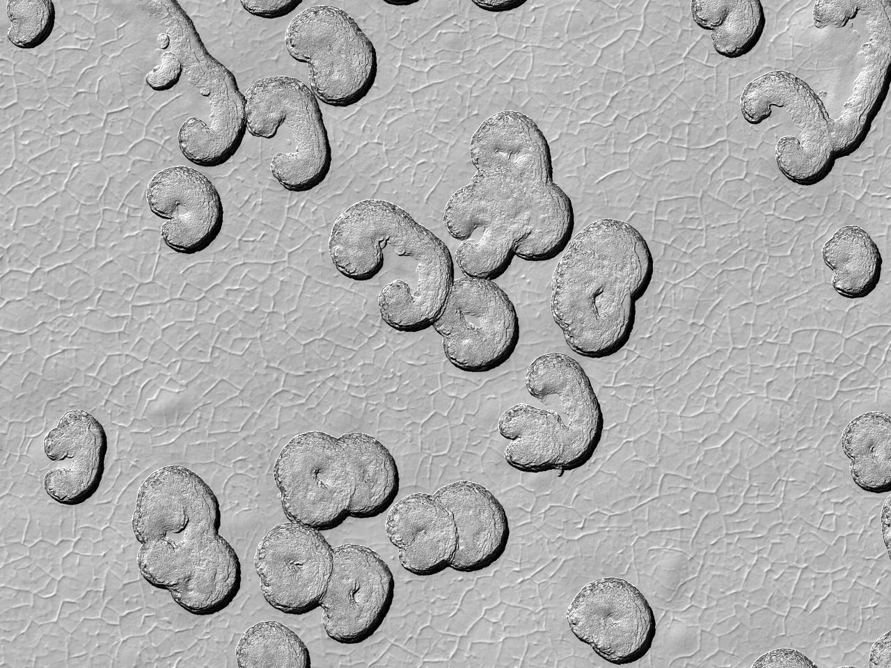 Studie av de årlige endringene av sydpolen på Mars