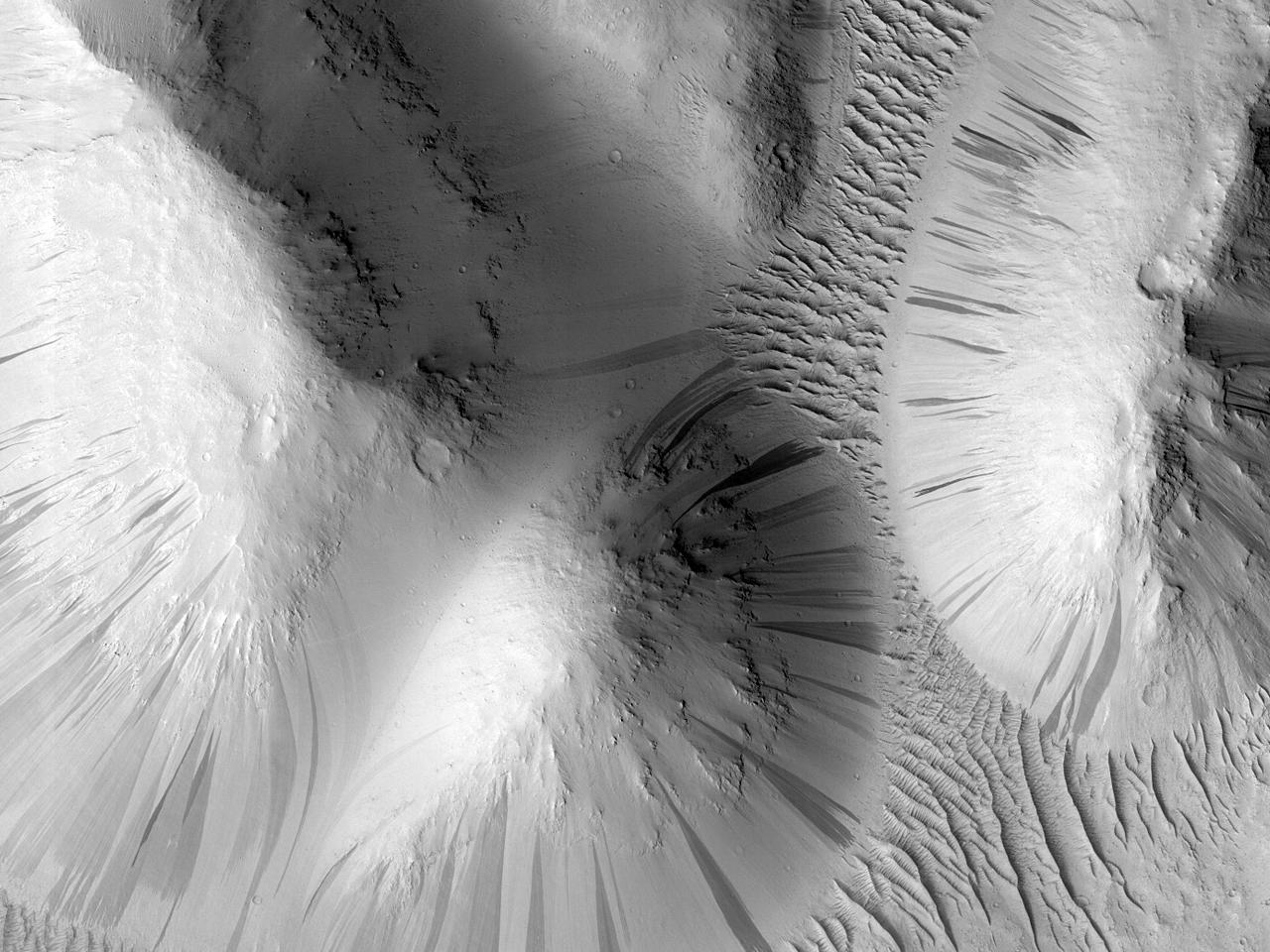Возможная область для исследования людьми на плато Zephyria Planum