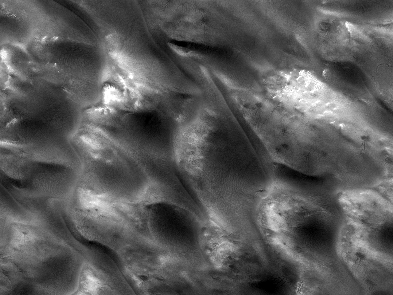 Поле дюн с паукообразными формациями