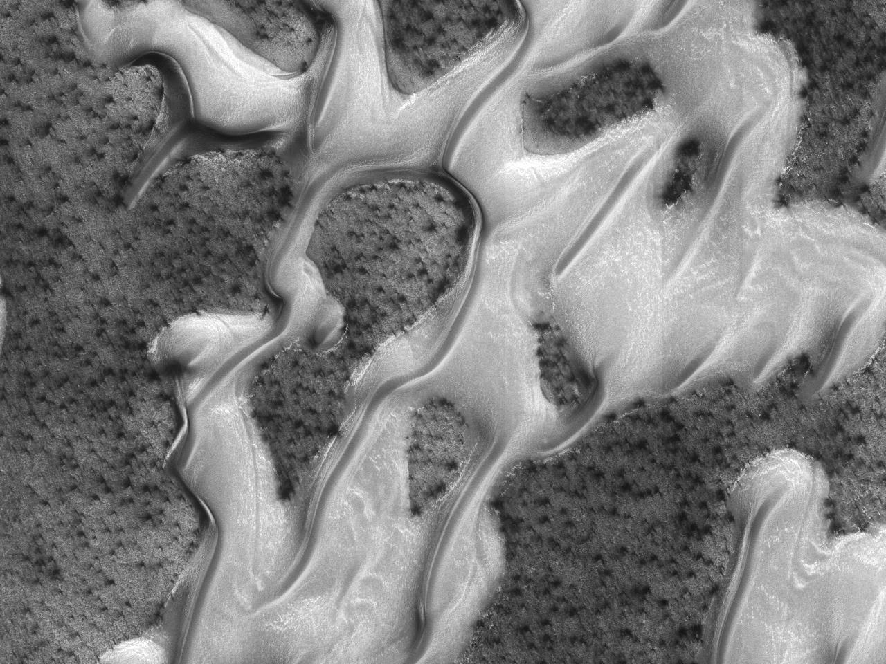Ландшафт полярных дюн, названных  « Arrakis »