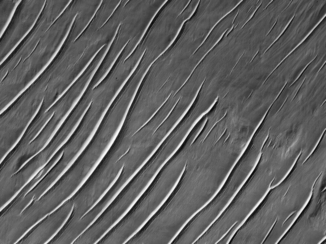 Интересные формы рельефа возле карбонатных обнажений