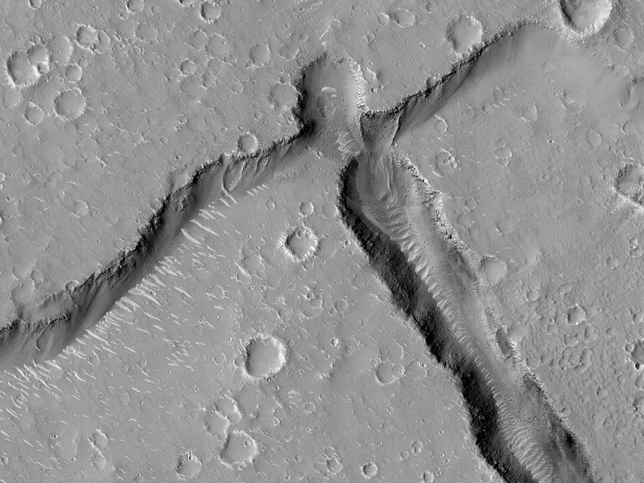 Впадины на равнине Utopia Planitia