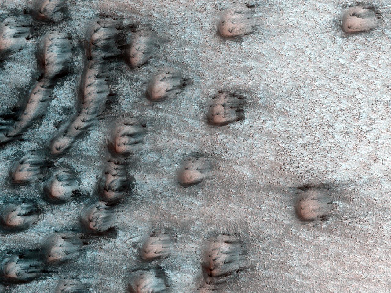 Un mozaic de dune în zona polară