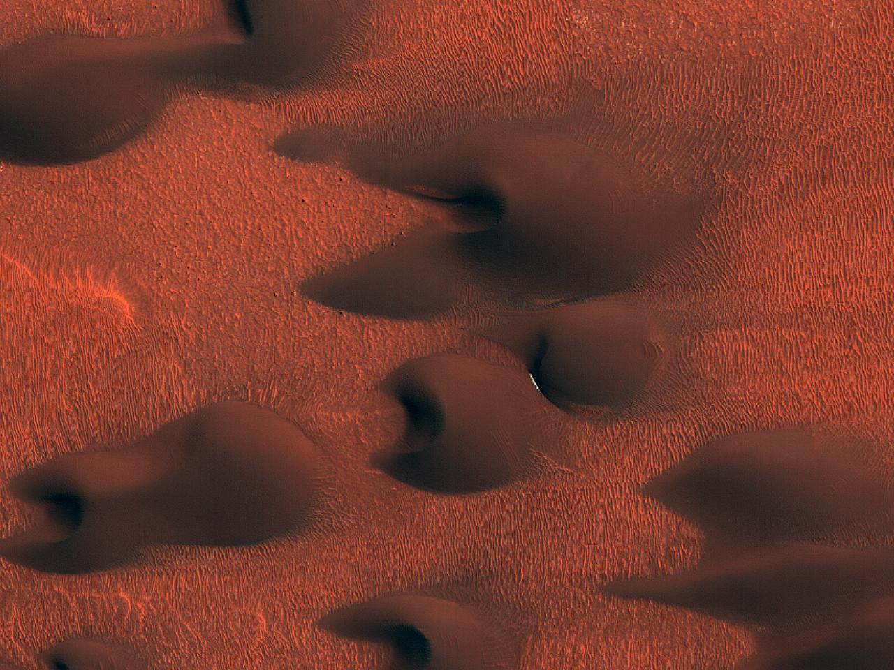 Structuri eoliene bazale în Scandia Cavi