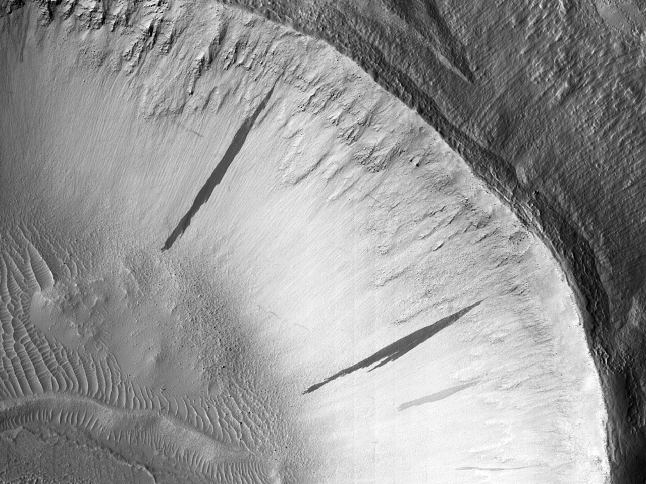 Dungi pe o pantăîntr-un crater de impact