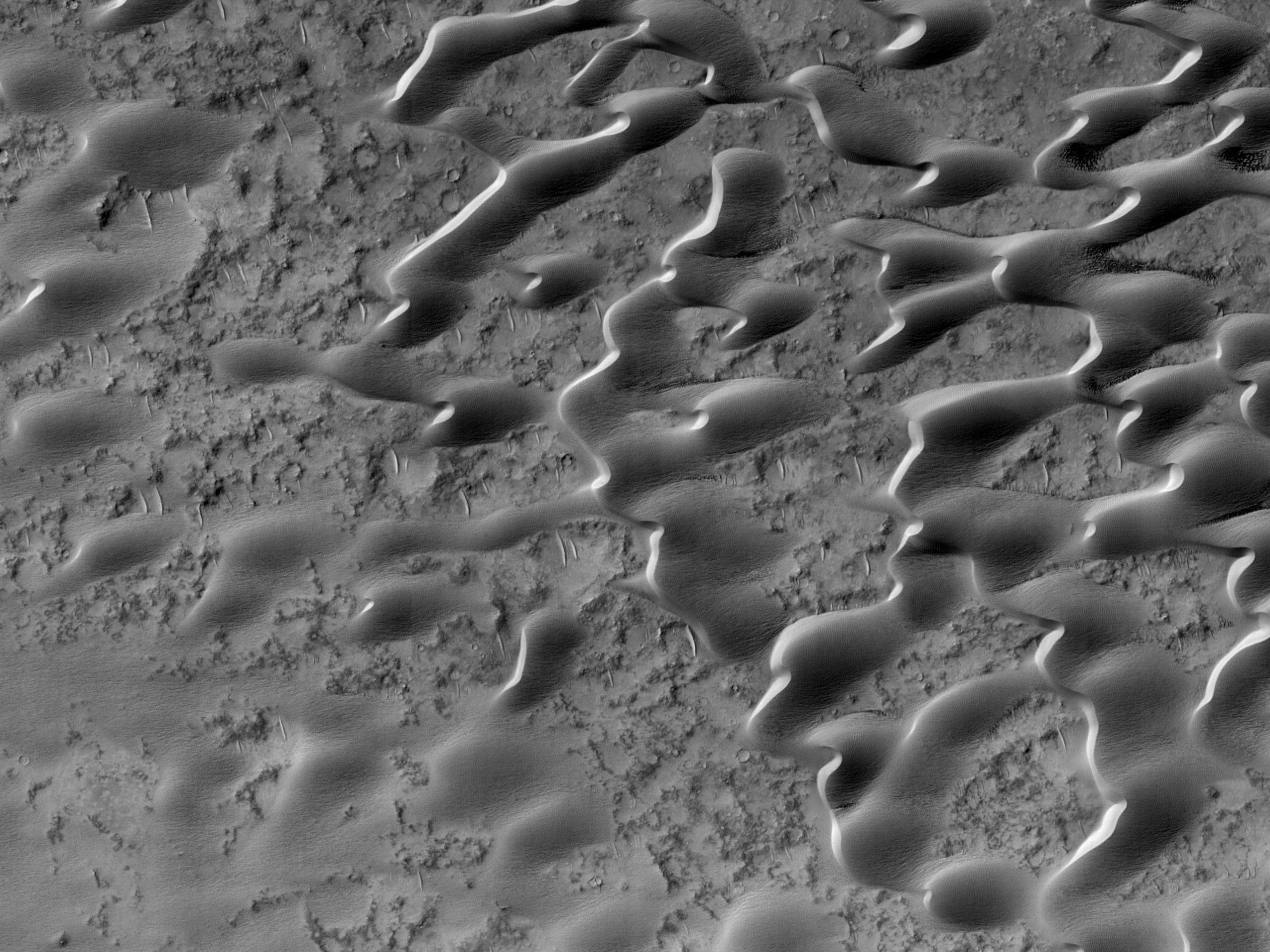 Pânză de nisip lângă Meroe Patera