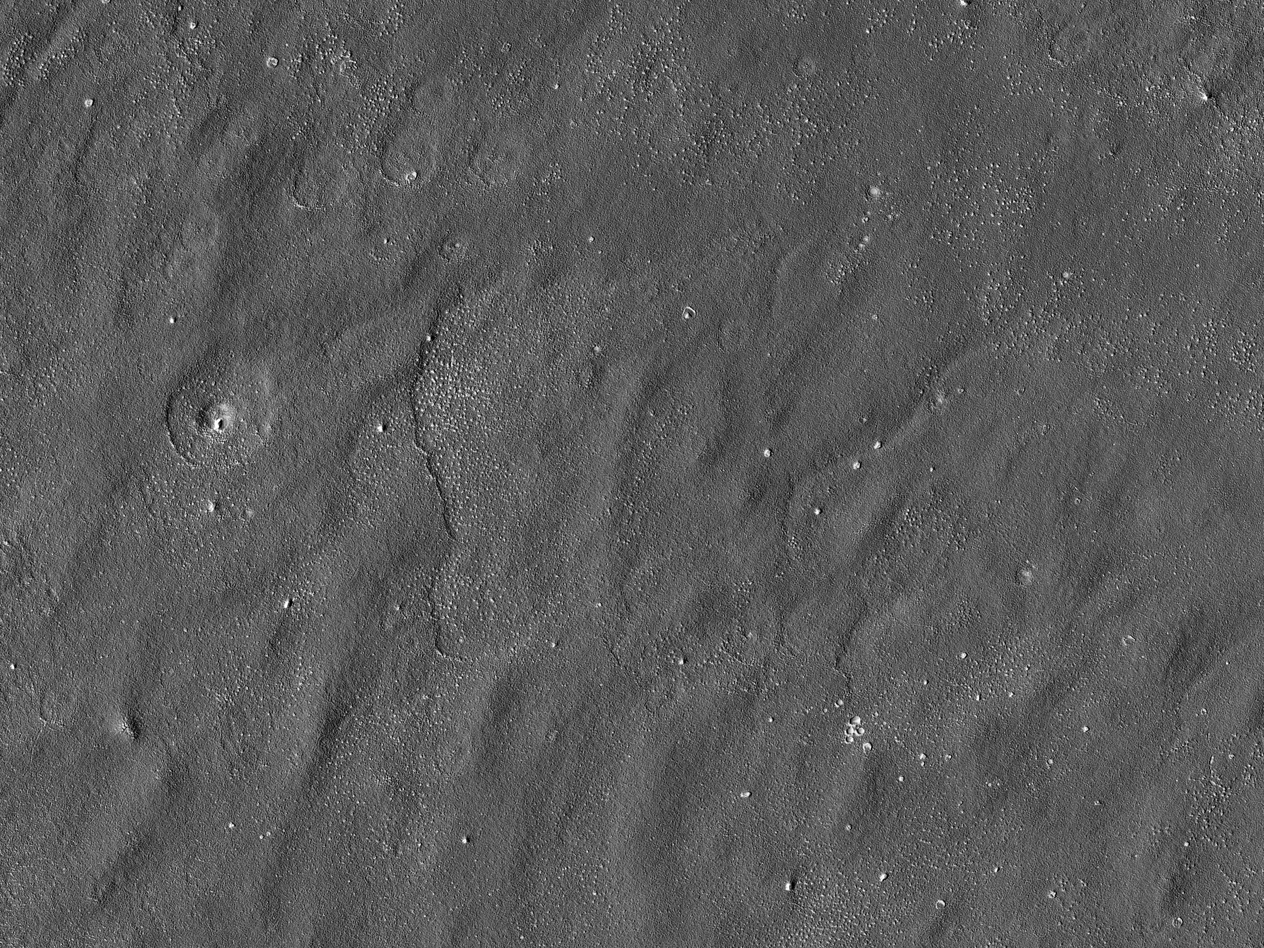Possibile campo di atterraggio per Red Dragon in Arcadia Planitia