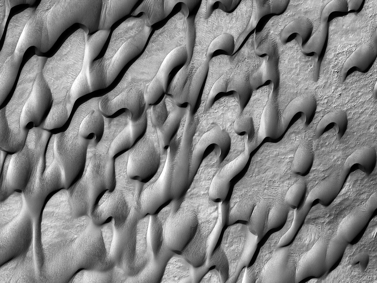 Dune sul fondo del cratere Holden