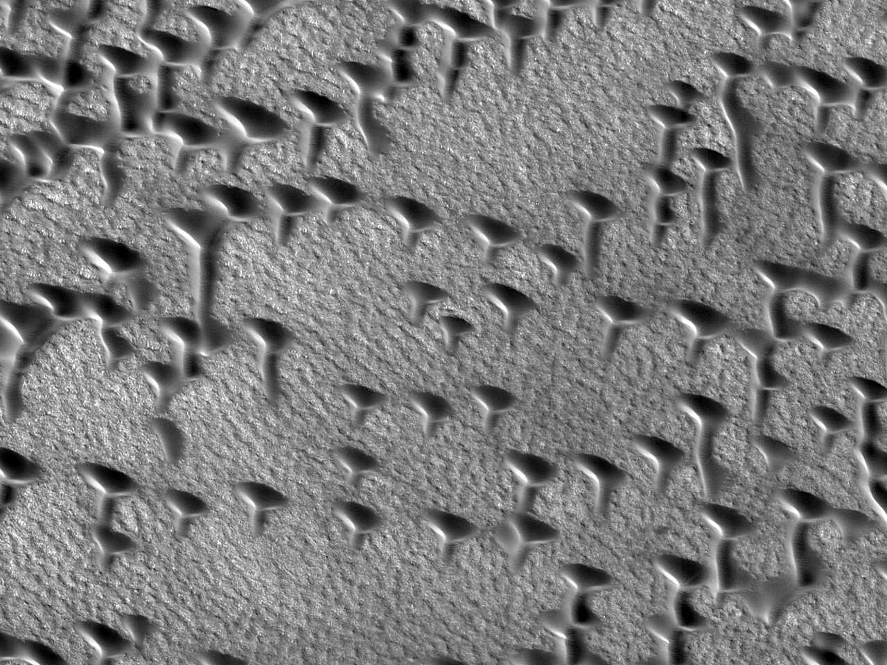 Dunes in the Shapes of Ts and Vs