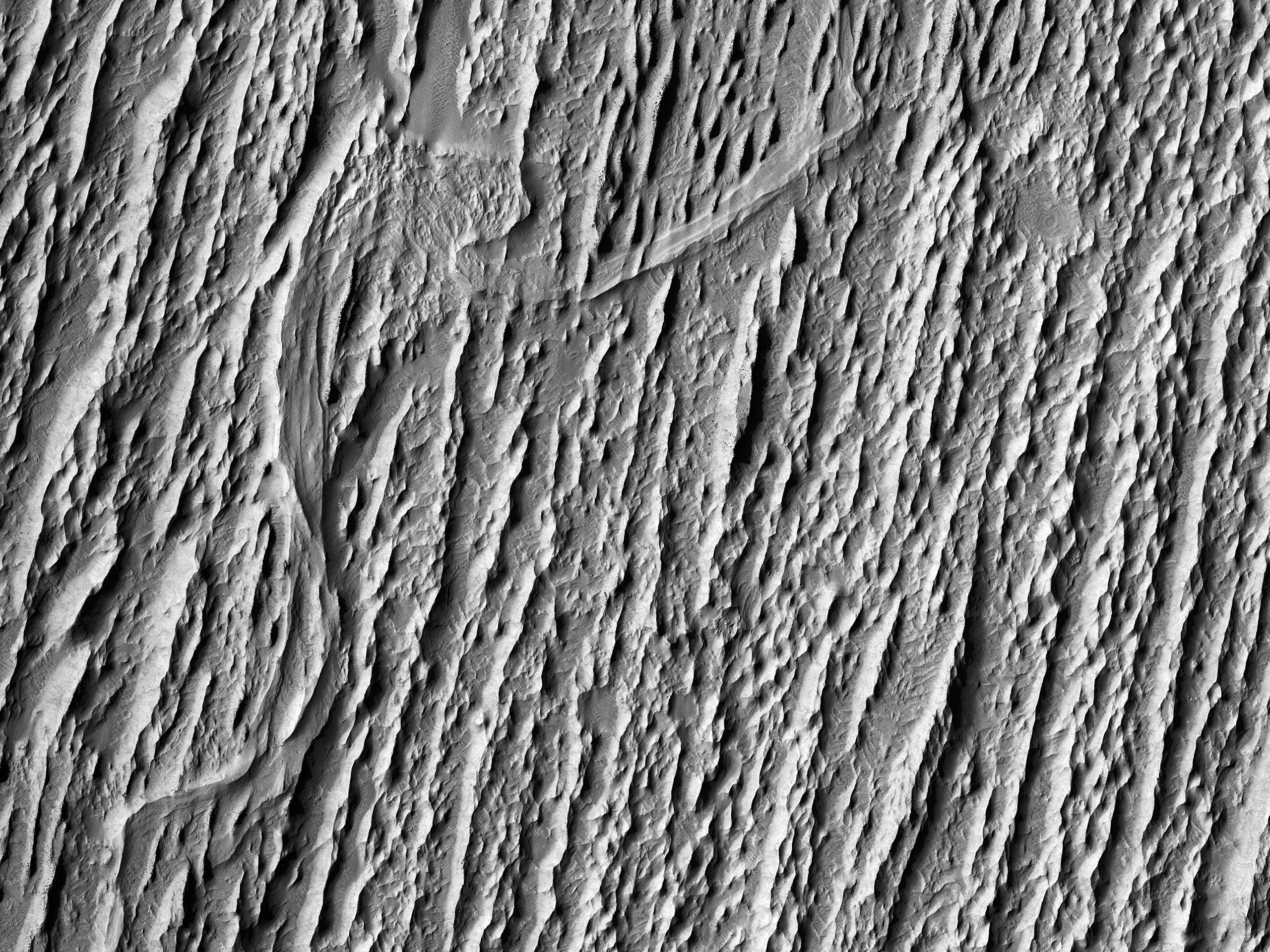 Raised Curvilinear Ridges