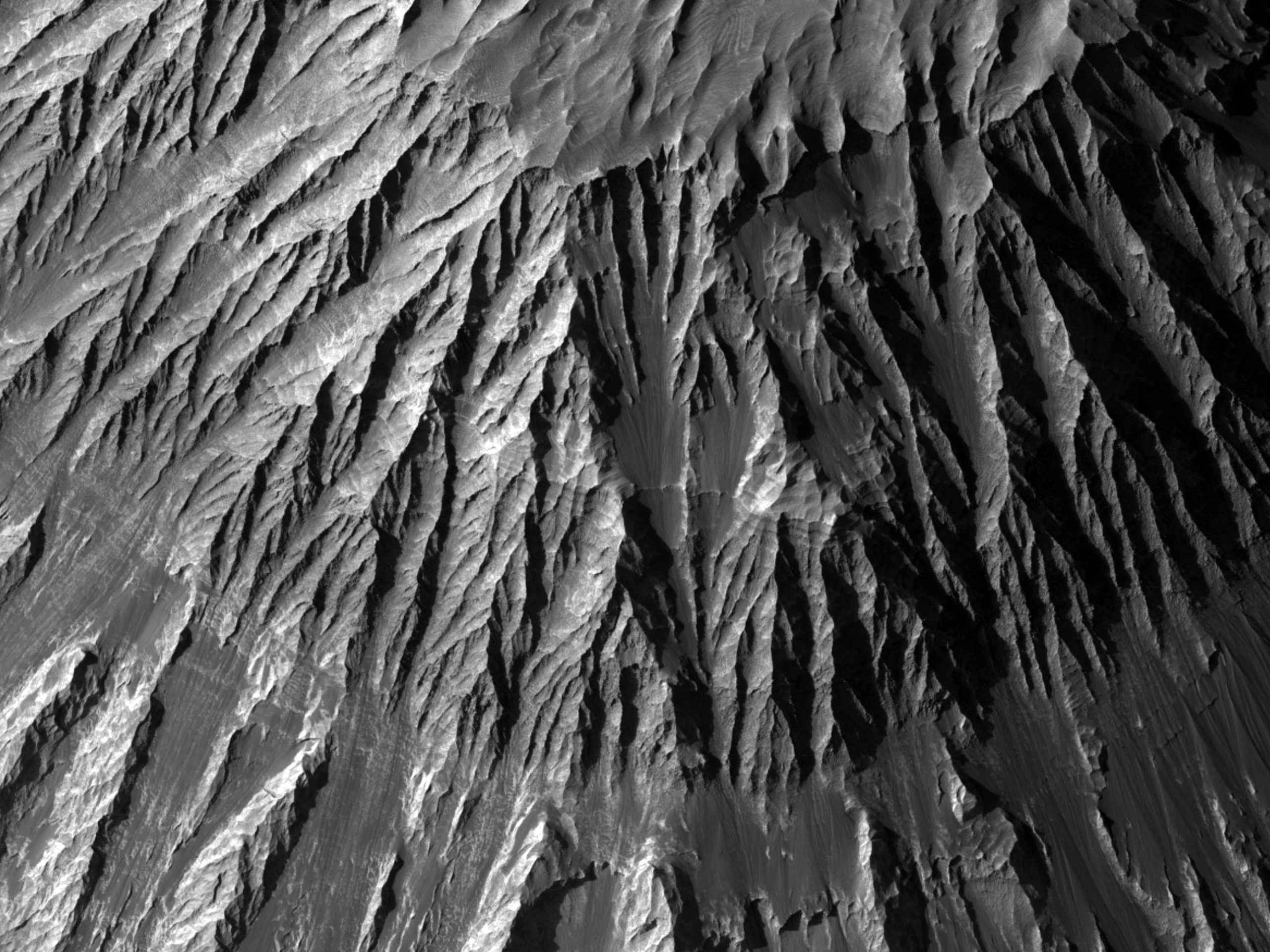 Majestic Slopes and Ridges
