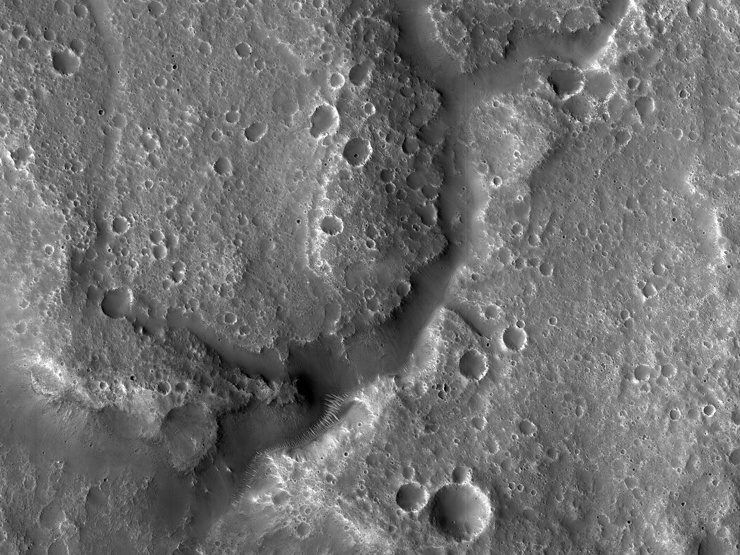Branched Valleys West of Idaeus Fossae