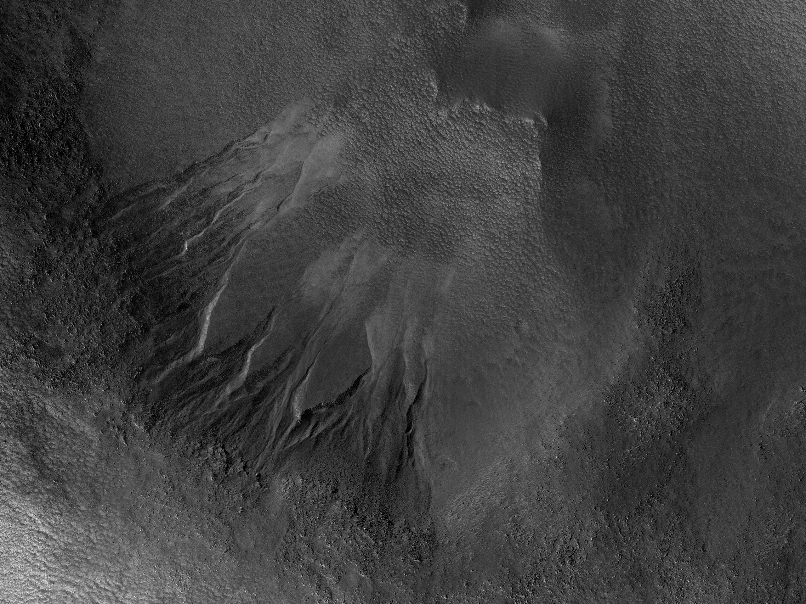 Gullies in a Depression in Charitum Montes
