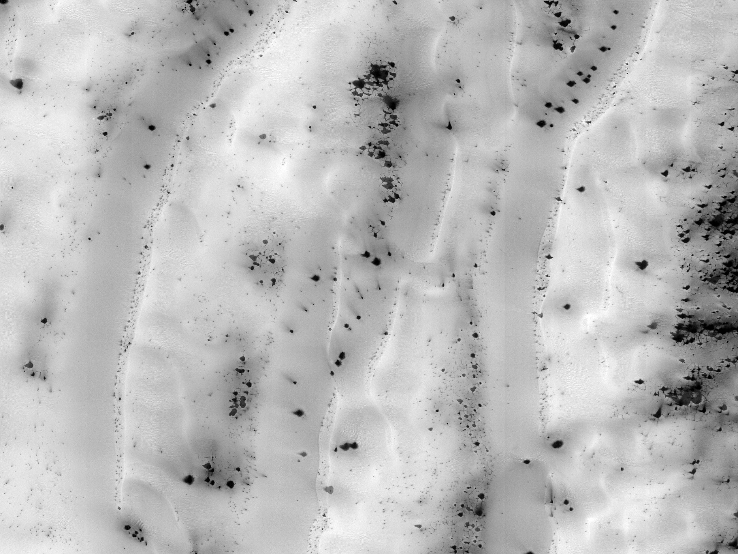 Dunes with Sliding Ice Blocks