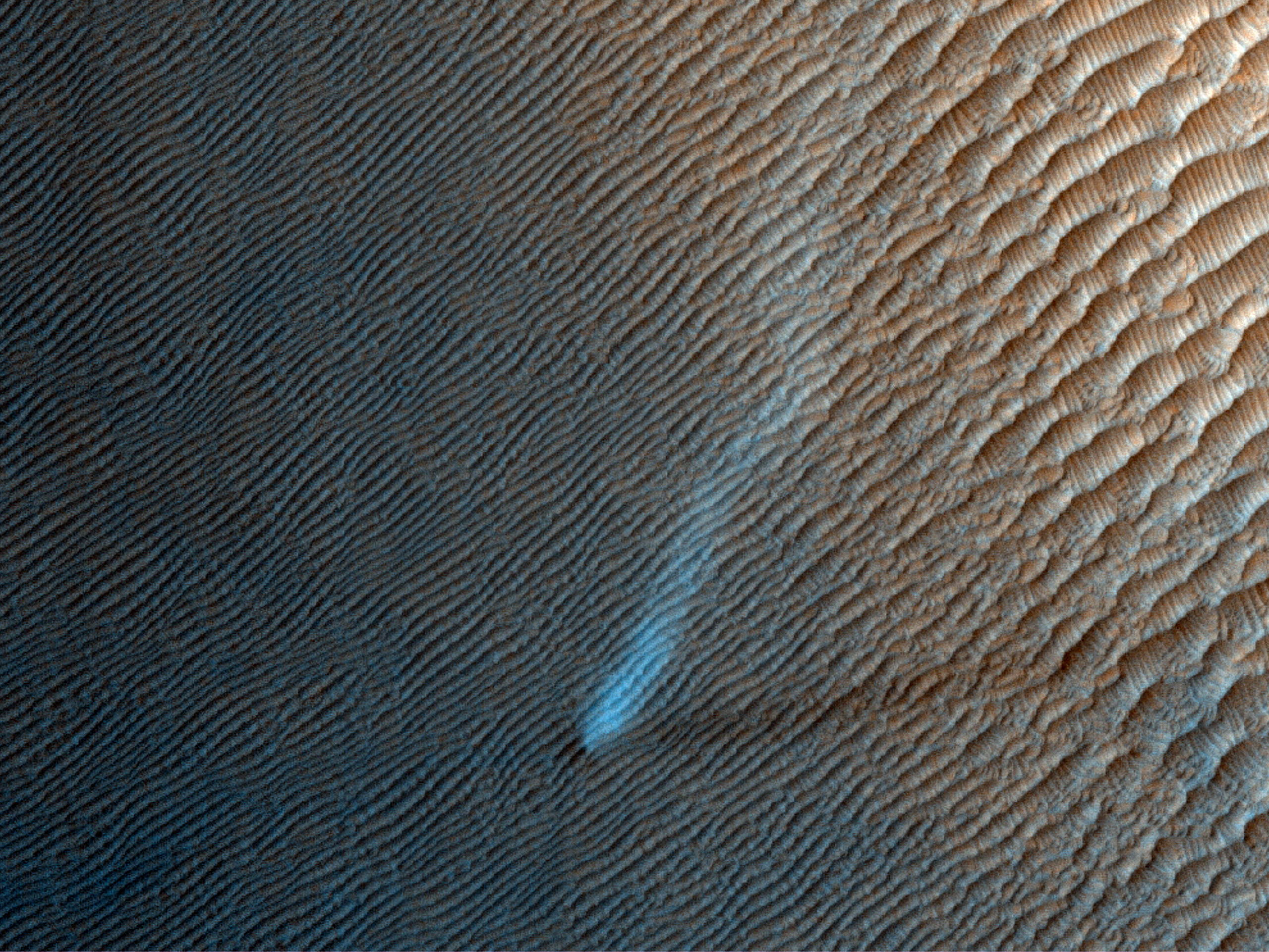 A Lonely Dust Devil