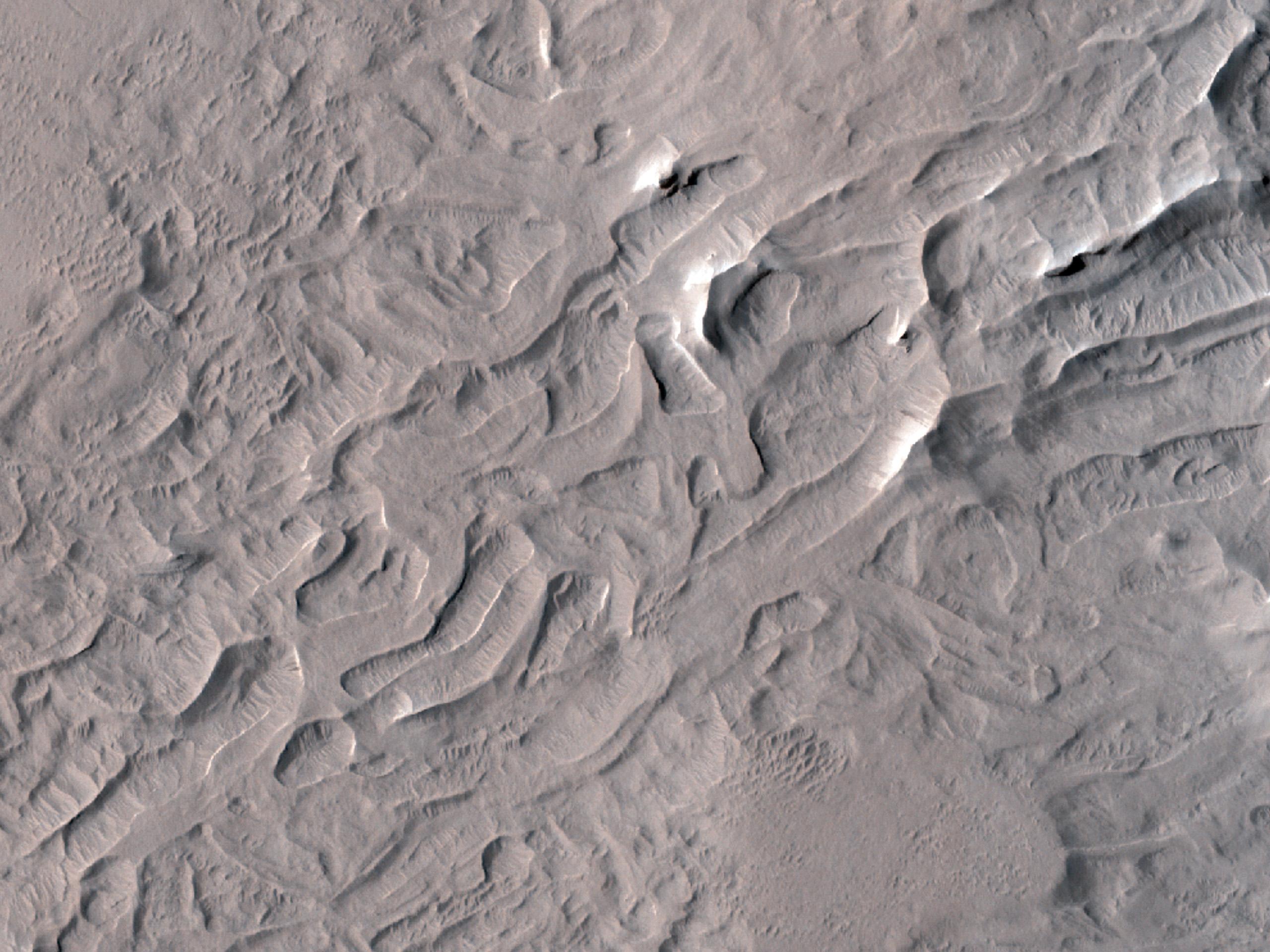 Ridges and Crescentic Forms in Arabia Terra