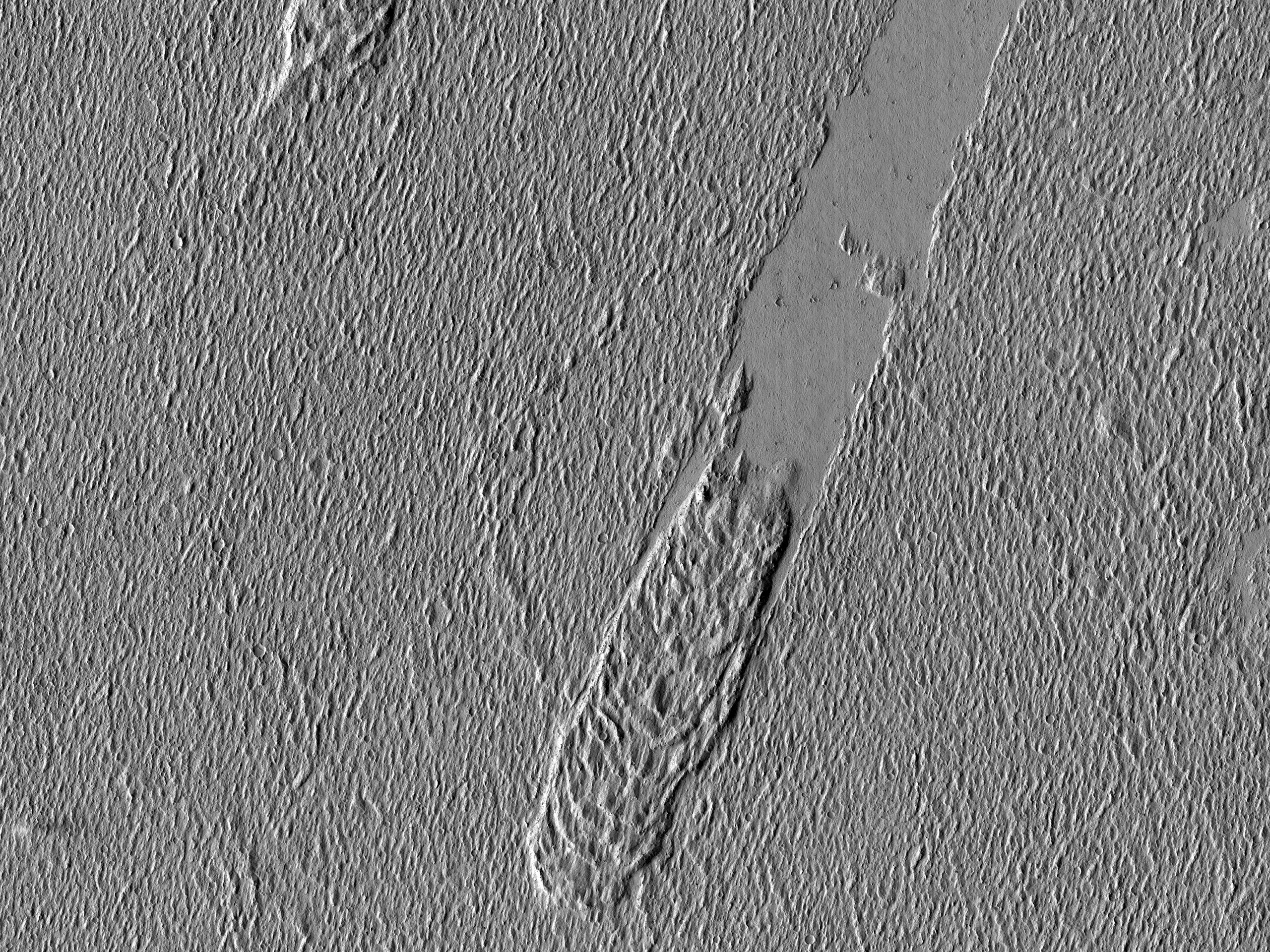Lava Crust and Wakes in Amazonis Planitia