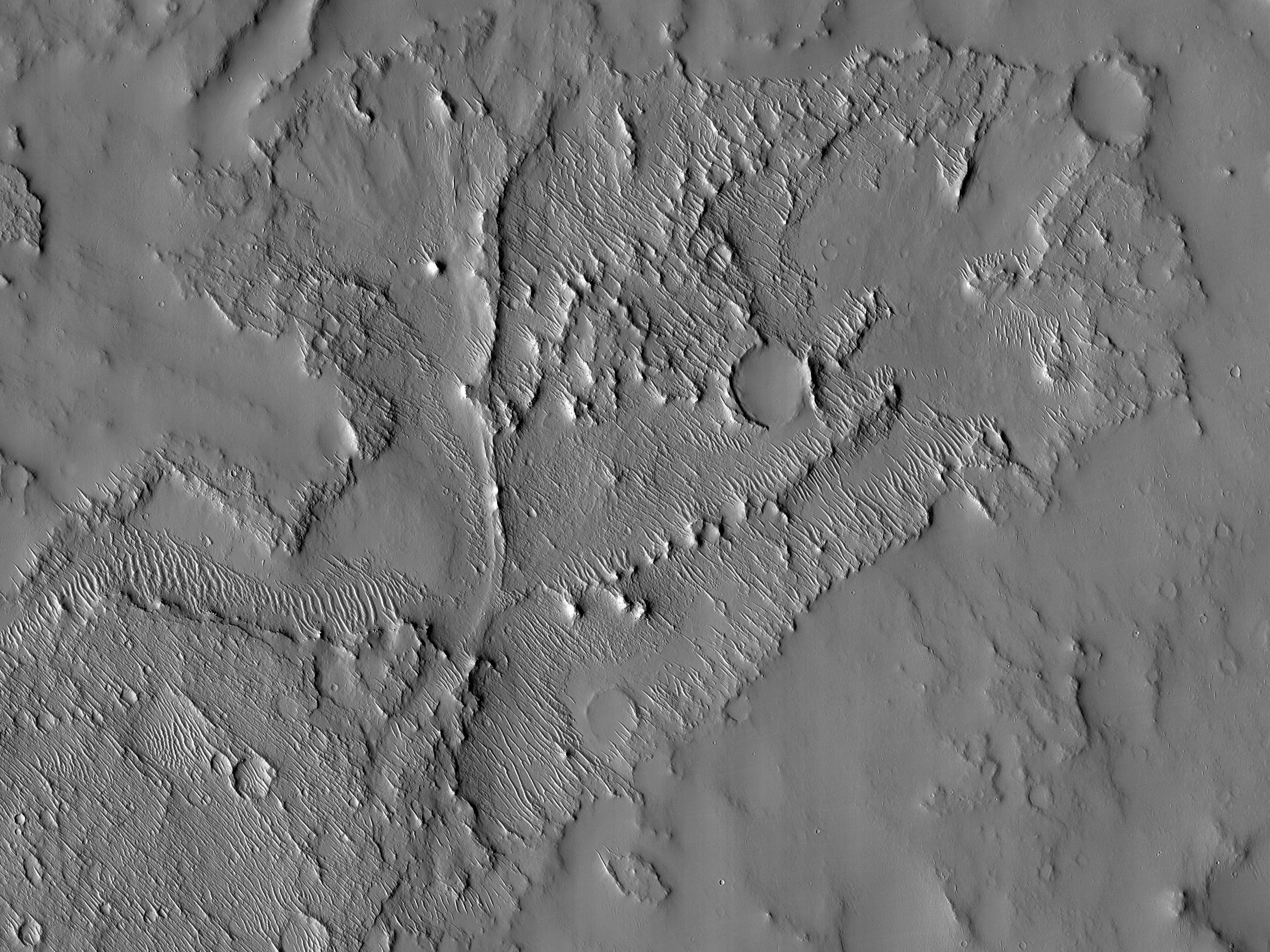 Convergent Branched Ridges