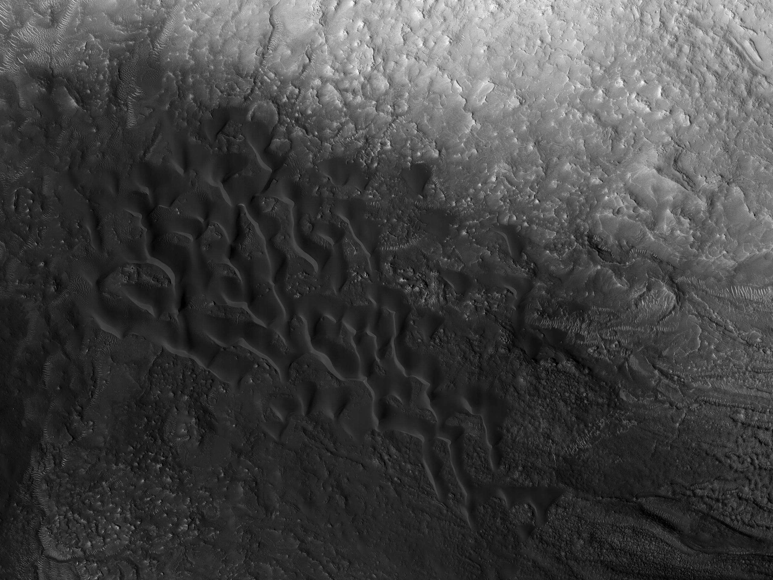 Nilosyrtis Mensae Dunes