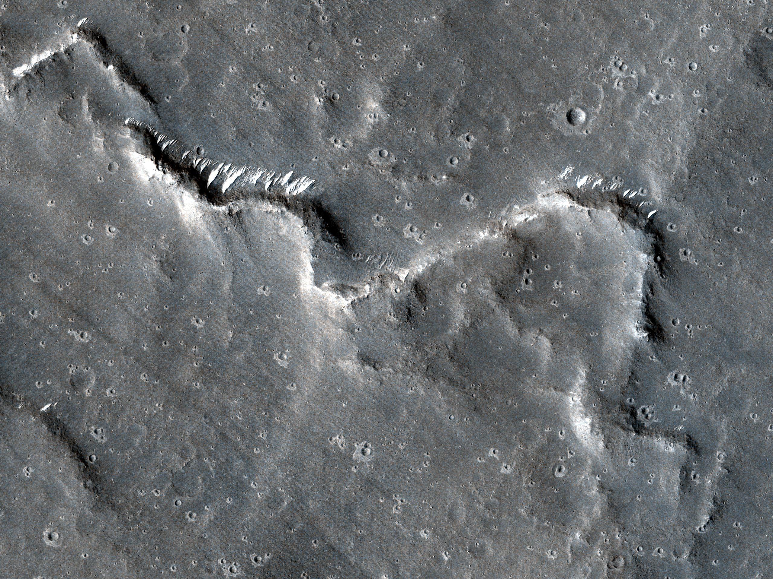 Sinuous Ridges in Elysium Planitia
