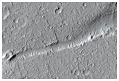 Geologic Faulting in Amazonis Planitia