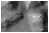 Gullies in Sirenum Fossae Associated with a Distinct Layer