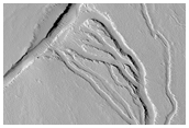 Channels South of the Base of Ascraeus Mons