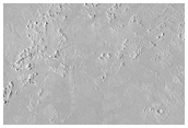 Ring and Cone Structures atop Rafted Plates in Athabasca Valles