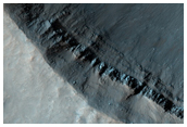 Gullies with Contributory and Distributory Channels in MOC E14-01570