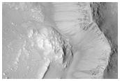 Bright Gully Deposit and Fresh Gullies in Terra Sirenum