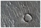 Proposed MSL Site in Isidis Basin Escarp