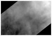 Dust Storm Hampers Seasonal Monitoring Campaign