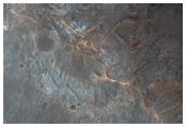 High Thermal-Inertia Terrace Blocks in Holden Crater