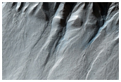 Subset of 61 Gullies Previously Identified in MOC Image M04-01142