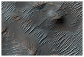 Dendritic Valley System in Noachis Region